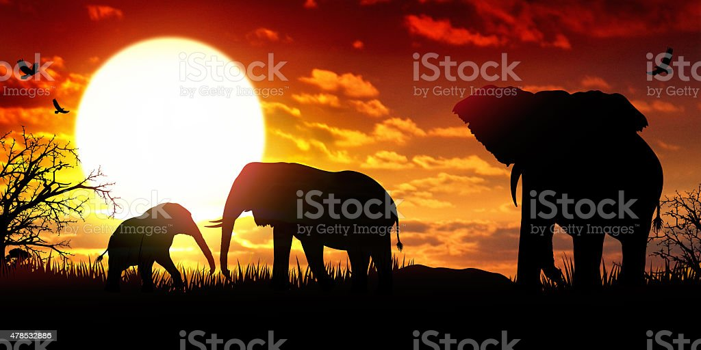 African Elephants at the sunset wildlife scenery vector art illustration