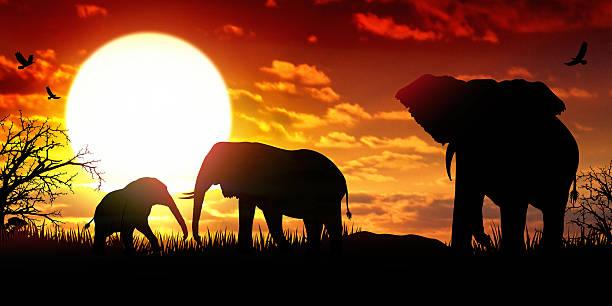 Elephants SVG Elephant family Elephant Monogram SVG files | Etsy in 2020 | Elephant  family, Elephant silhouette, Cricut elephant
