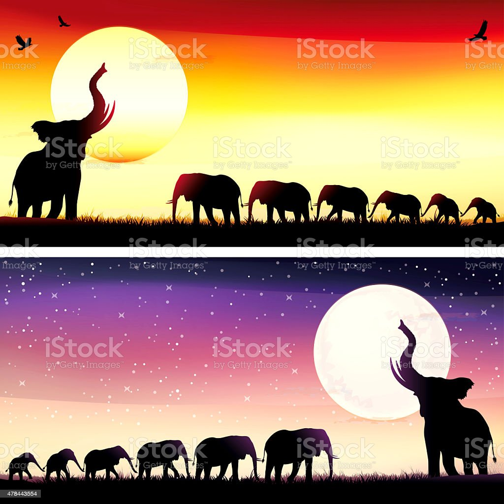 African Elephants silhouettes safari set vector art illustration
