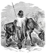 African man with spear and cow