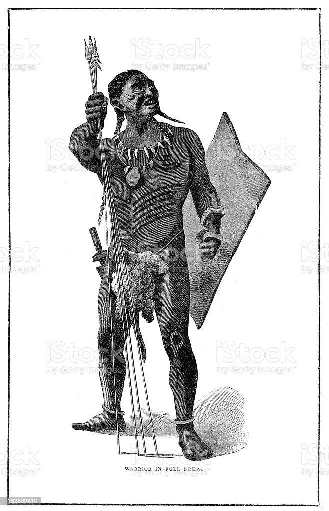 African Warrior in Full Dress vector art illustration