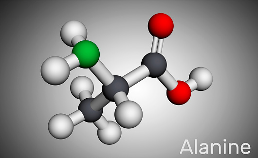 Alanine, L-alanine, Ala, A molecule. It is non-essential amino acid. Molecular model. 3D rendering