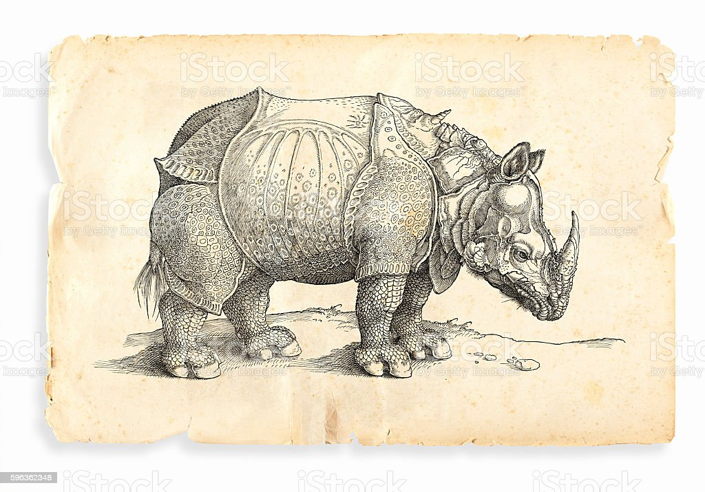 Albrecht Durer rhinoceros woodcut 1535 royalty-free albrecht durer rhinoceros woodcut 1535 stock vector art & more images of 16th century