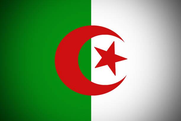 Algeria flag 3D illustration vertical bicolor symbol. vector art illustration