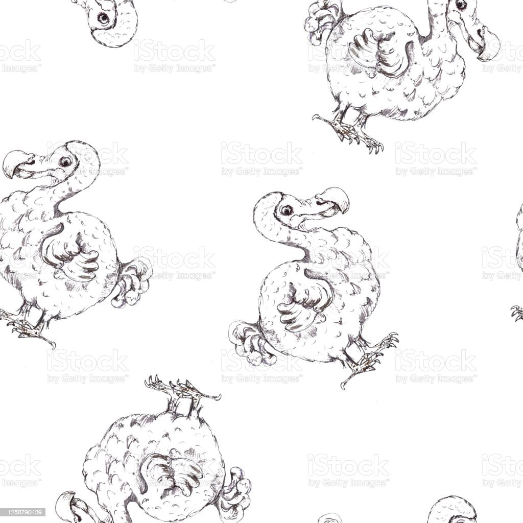 Alice In Wonderland Sketched Seamless Pattern Black White Coloring Page Isolated Stock Illustration Download Image Now Istock