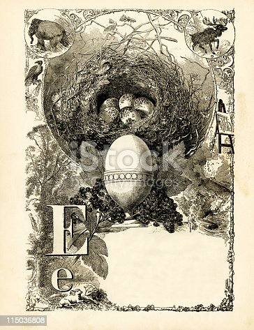 istock Alphabet Letter Page 115036808