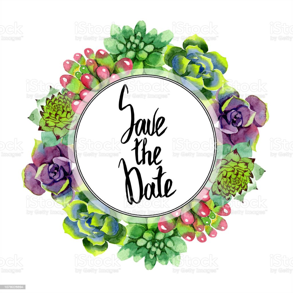 Amazing Succulent Save The Date Handwriting Calligraphy Watercolor Background Frame Wreath Aquarelle Drawing Stock Illustration Download Image Now Istock