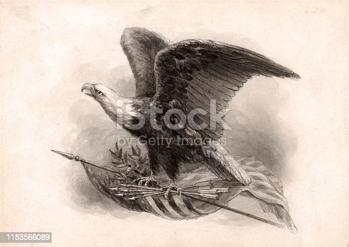 Vintage illustration features an American bald eagle with wings slightly spread and talons resting on an American flag, olive branch, and arrows. The bald eagle is the national bird of the United States of America.