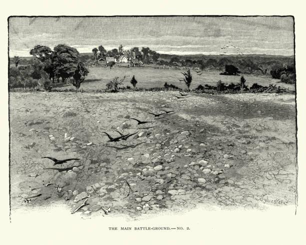American Civil War - Battlefield of Bull Run, Robinson house vector art illustration