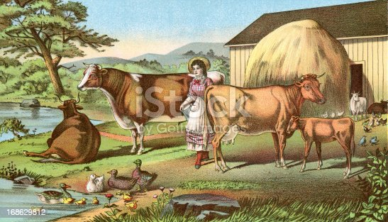Among the Cattle, a chromo lithograph by Woodward & Teirnan, St Louis. In Cyclopedia of Live Stock 1882.