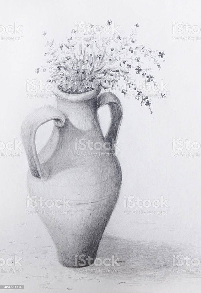 Amphora clay pot flowers pencil drawing royalty free amphora clay pot flowers pencil drawing stock