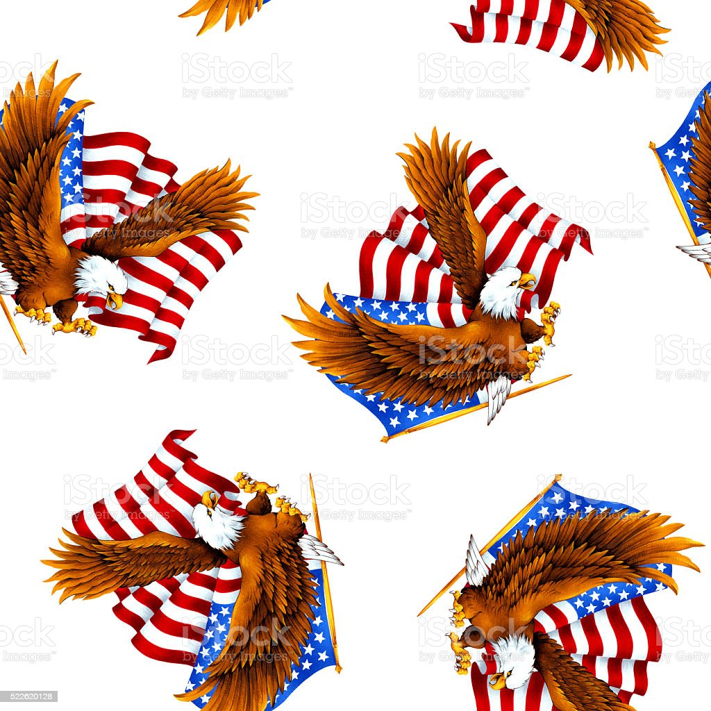 An eagle and flag pattern vector art illustration