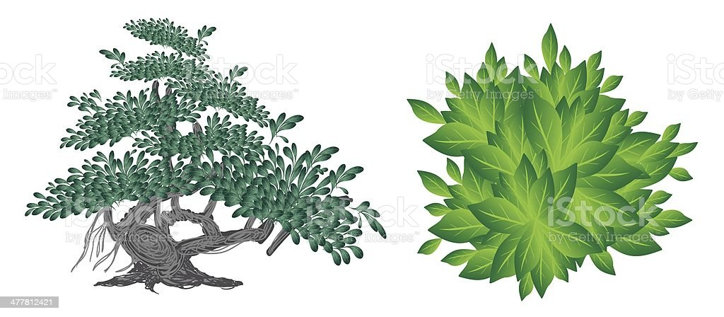 An Isometric Collection of Green Trees vector art illustration