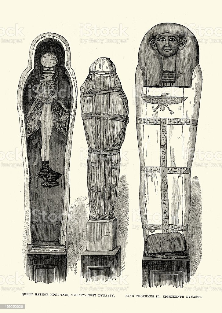 Ancient Egyptian Artefacts - Mummy of Duathathor-Henuttawy and T vector art illustration