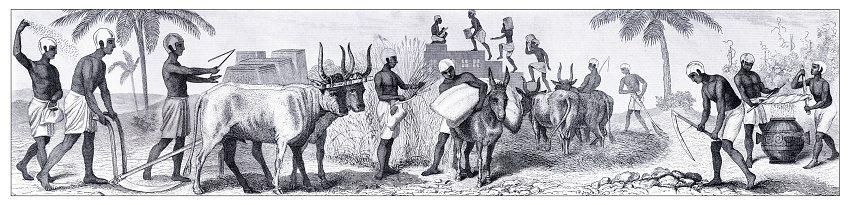 Ancient egyptian farmers on the field working Original edition from my own archives Source : Bilder-Atlas - Ikonographische Encyklopädie 1870