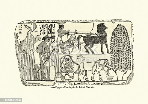 Vintage engraving of Ancient Egyptians using horses to pull chariots