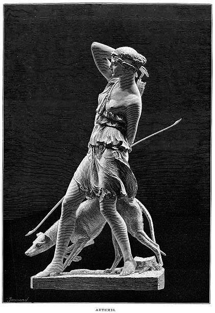 """Ancient Statue of the Goddess Artemis """"Vintage engraving of Artemis Ancient Greek Goddess of the Hunt, Forests and Hills, the Moon. In roman mythology her name was Diana."""" artemis stock illustrations"""