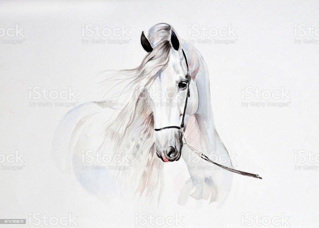 andalusian watercolor painting - ilustración de arte vectorial