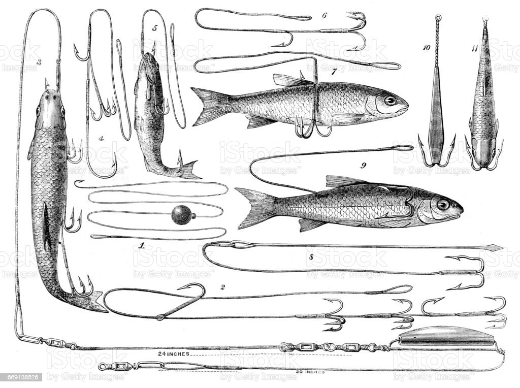 Angling engraving 1878 vector art illustration
