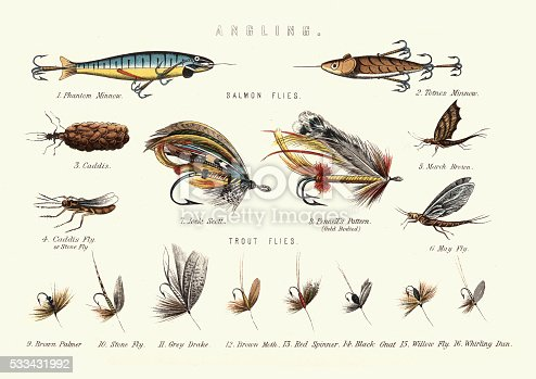 Vintage engraving of Victorian Fishing lures. Salmon flies and Trout flies.