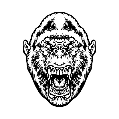Angry beast gorilla head Silhouette illustrations for your work Logo, mascot merchandise t-shirt, stickers and Label designs, poster, greeting cards advertising business company or brands.