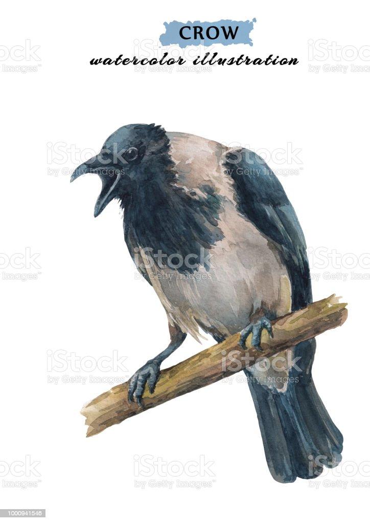 Ilustración de Cuervo Enojado Llorando Sentada En La Rama y más ...
