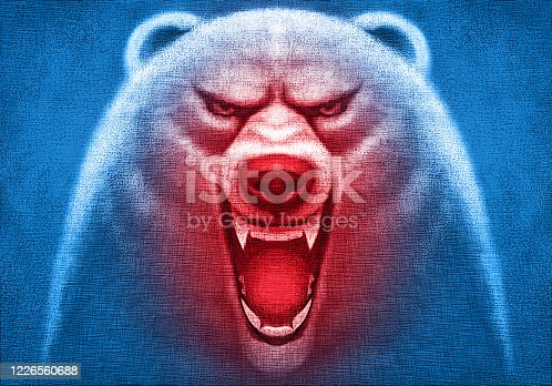digital painting / raster illustration of angry polar bear head