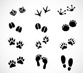 Animal and human paw and footprint set  - simple illustrations isolated on white background