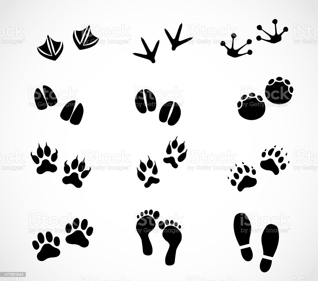 Animal and human paw and footprint set vector art illustration