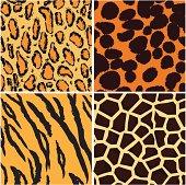 Animal background pattern