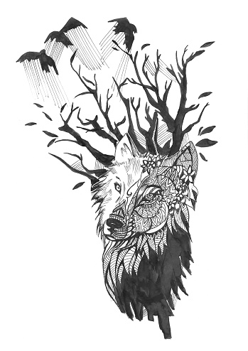 animal illustration, an image of a wolf's head with a tree and flying birds.