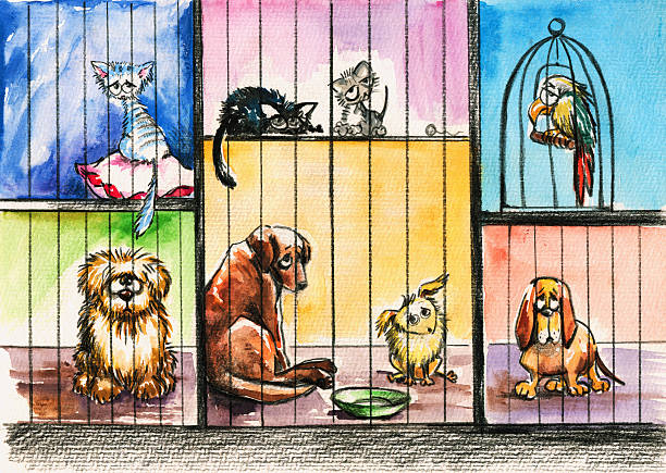Animal pound. Sad animals in the pound.Picture I have created with watercolors. animal shelter stock illustrations
