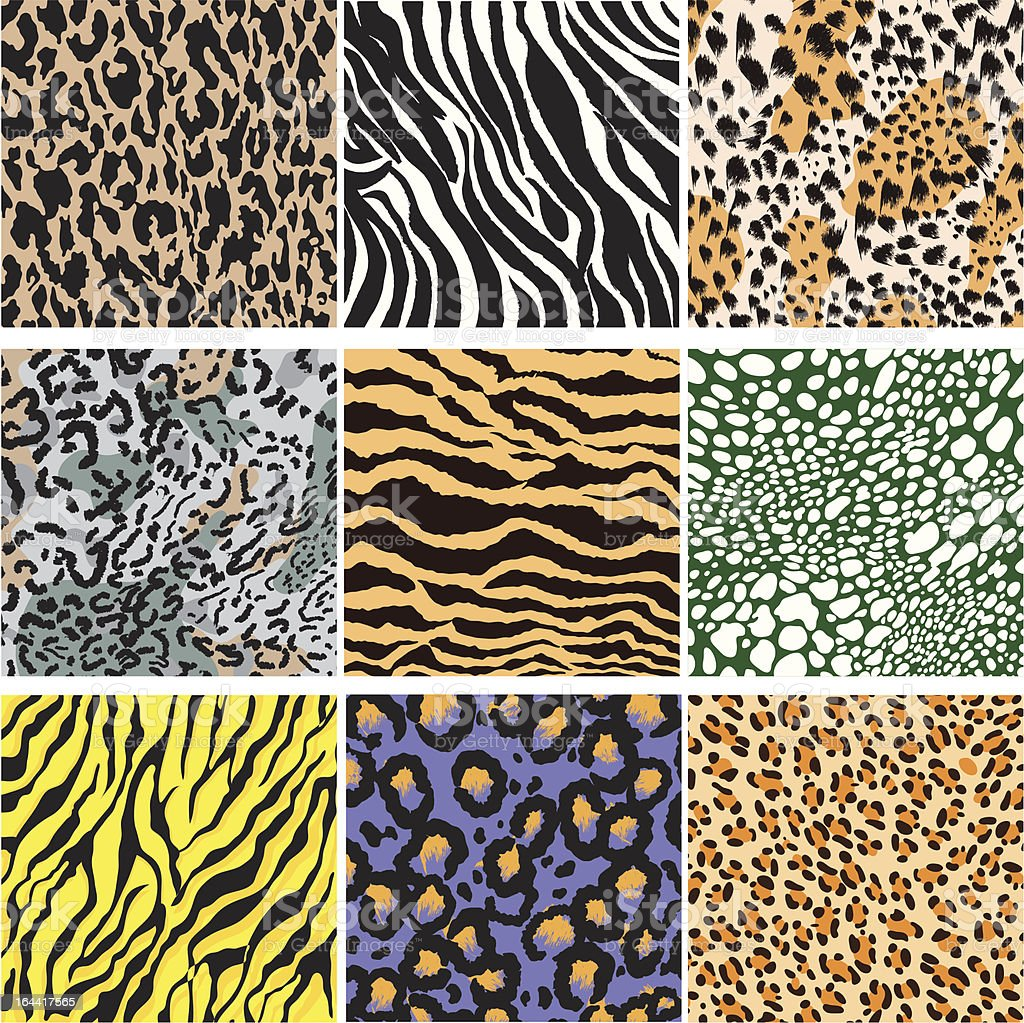 Animal Skin Set vector art illustration