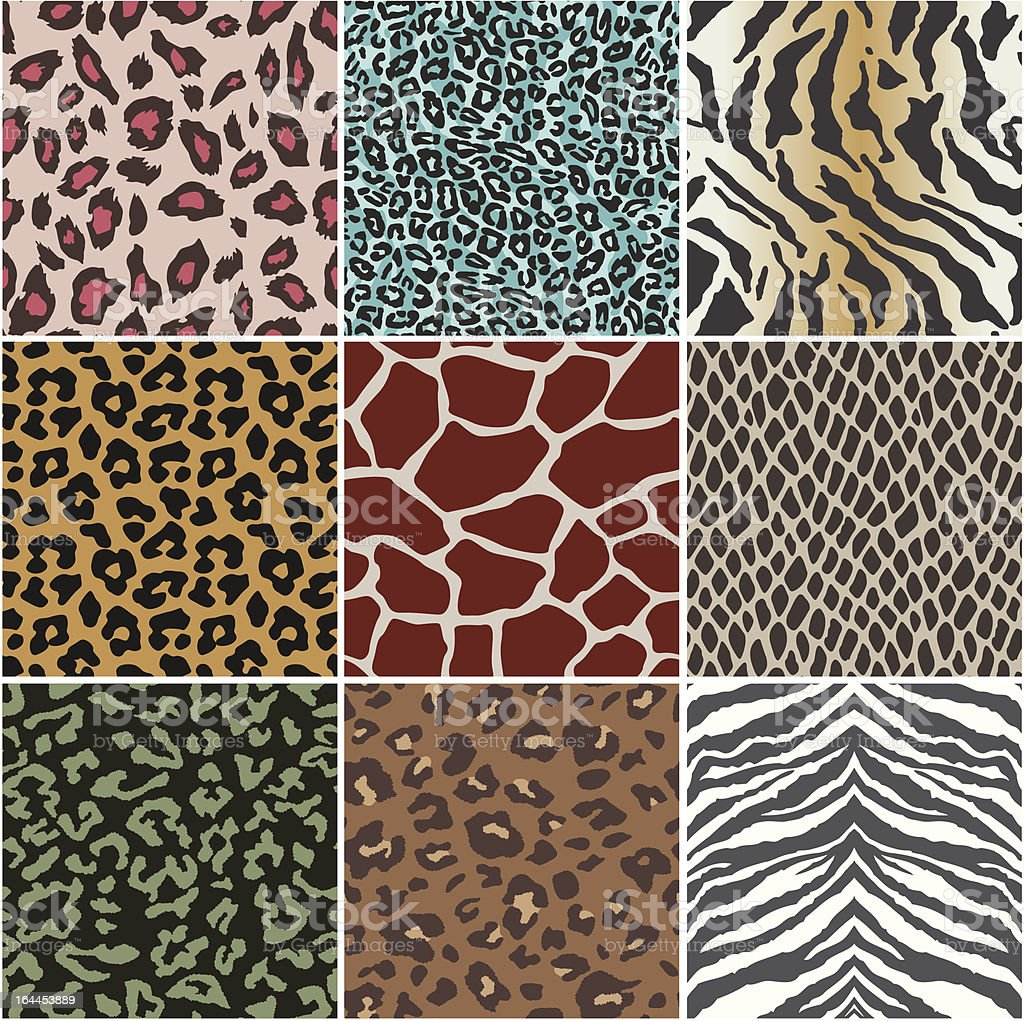 animal skin swatch vector art illustration