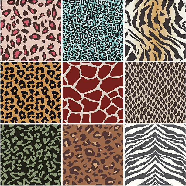 animal skin swatch - leopard texture stock illustrations, clip art, cartoons, & icons