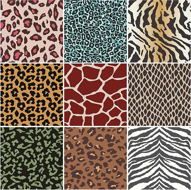 ilustraciones, imágenes clip art, dibujos animados e iconos de stock de piel de animal de muestras - textura de leopardo