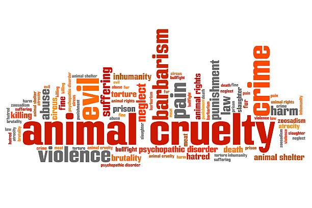 Animal violence Animal cruelty issues and concepts word cloud illustration. Word collage concept. animal testing stock illustrations