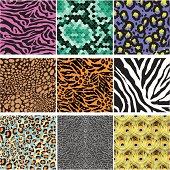 Animals Skin Pattern