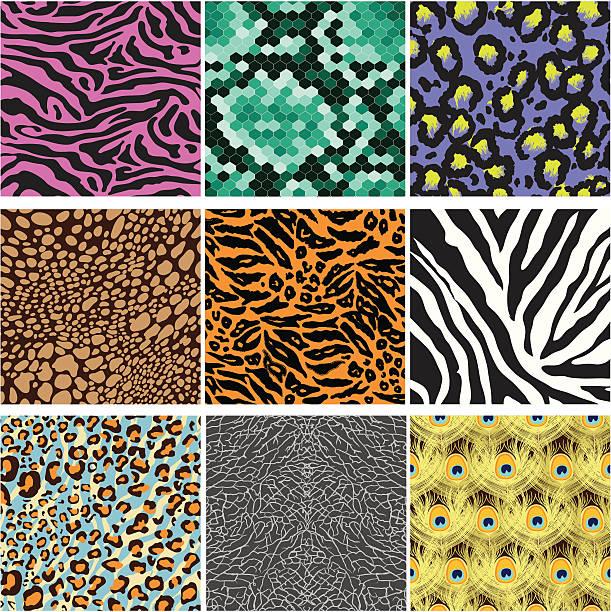 ilustrações de stock, clip art, desenhos animados e ícones de padrão de pele de animal - padrões zebra