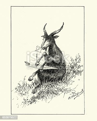 Vintage engraving of Anthropomorphic image of a goat writing a letter. 1890
