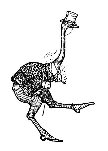Antique Art Nouveau illustration by Archie MacGregor from children book: Ostrich