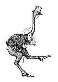istock Antique Art Nouveau illustration by Archie MacGregor from children book: Ostrich 1135978935