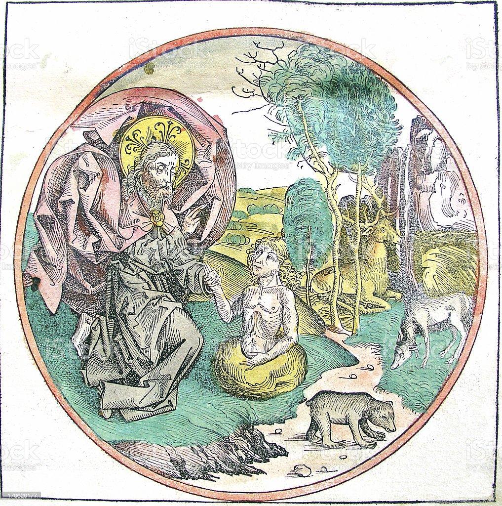 Antique Bible Illustration I Creation of Adam royalty-free stock vector art
