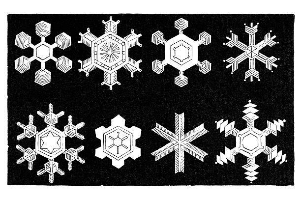 Antique book illustration: snowflakes vector art illustration
