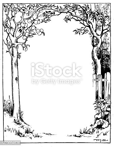Antique children book illustrations: Tree frame