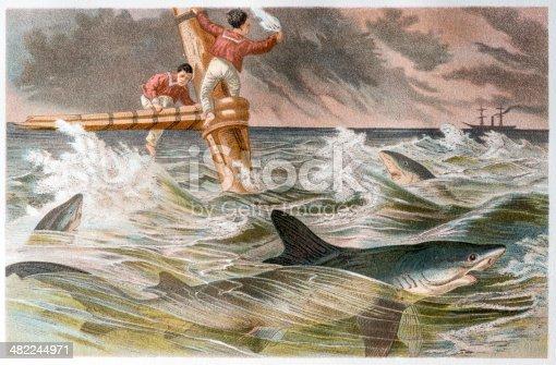 Antique color illustration of shipwreck with blue shark (Prionace glauca)