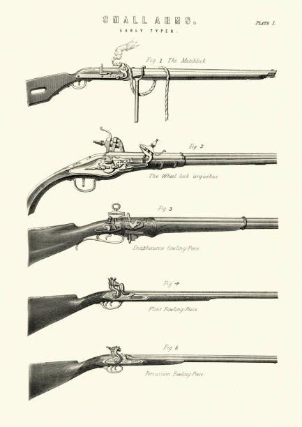 Antique firearms, guns, rifles, matchlock, arquebus, fowling piece vector art illustration