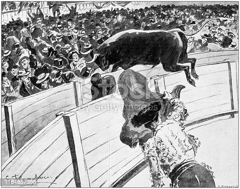 Antique illustration: Bullfight accident