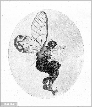 Antique illustration: Butterfly woman
