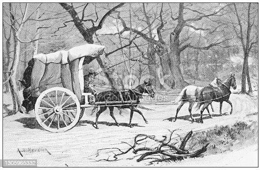 Antique illustration: Carriage in Asia
